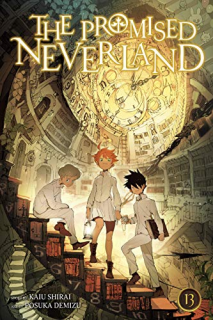 The Promised Neverland 13 (Ivrea Argentina)