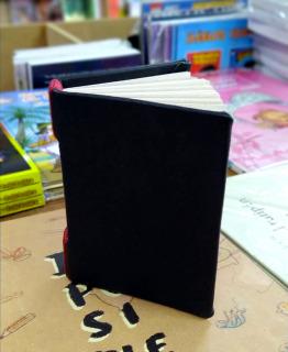 Cuaderno de cuero (Artesanal)